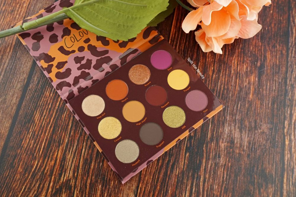 "ColourPop ""Good Sport"" Palette – Review, Swatches, 2 Looks"